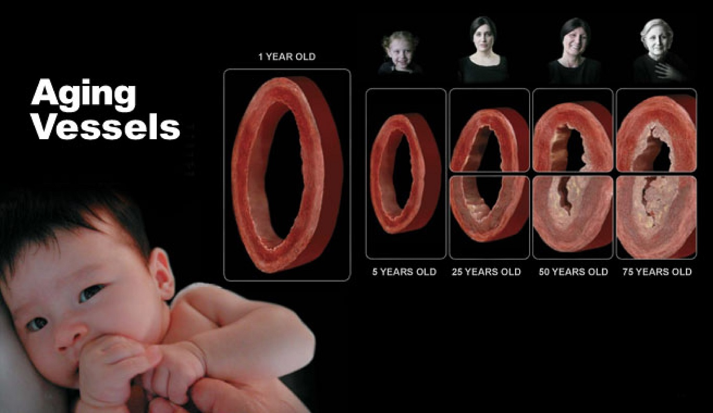 TEDMED Presentation -