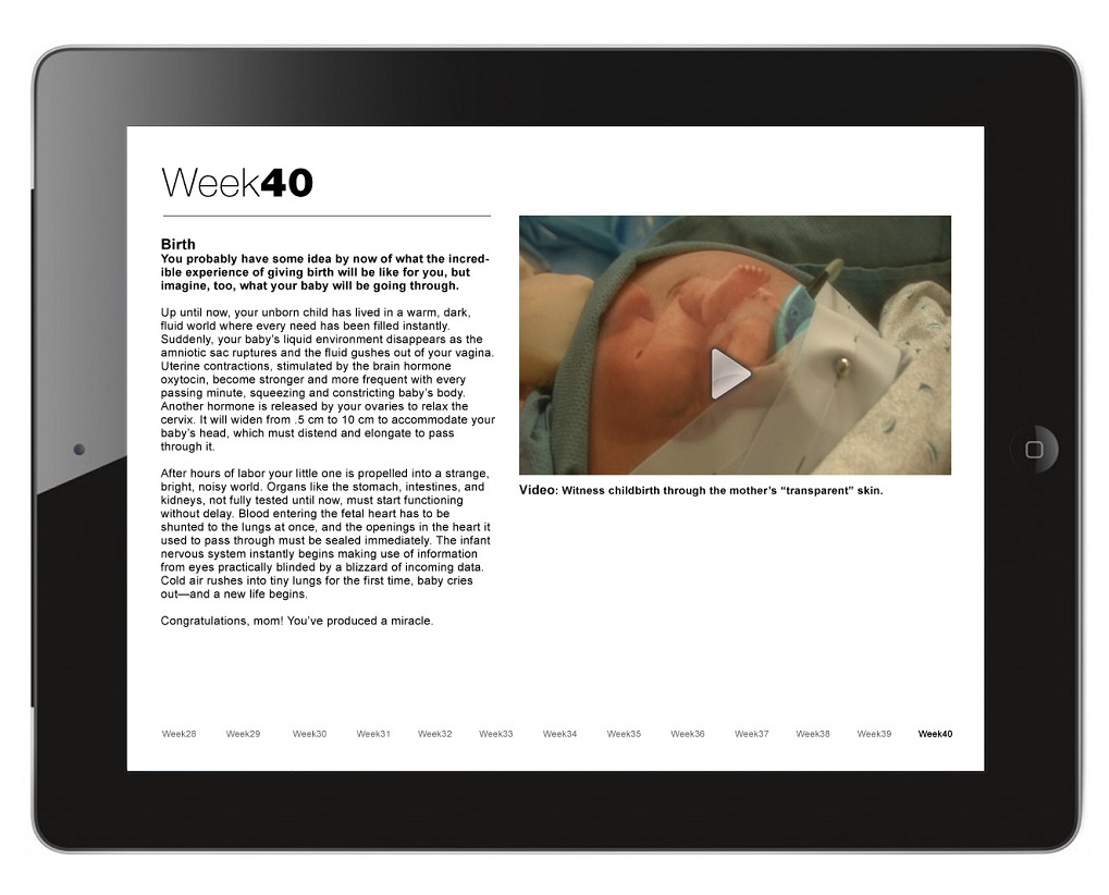 iBook: Pregnancy -